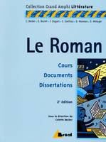 LE ROMAN, premier et second cycles universitaires