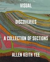 VISUAL DISCOVERIES A COLLECTION OF SECTIONS /ANGLAIS
