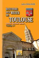 Histoire des Rues de Toulouse (Tome Ier), Monuments - Institutions - Habitants