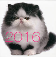 Calendrier 2016 / chats