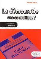 LA DEMOCRATIE : UNE OU MULTIPLE?