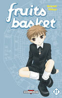 11, Fruits Basket Perfect T11