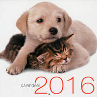 CALENDRIER MURAL CHATS ET CHIENS 2016