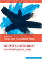 VIOLENCE A L'ADOLESCENCE - FRANCE-BRESIL : REGARDS CROISES, France-Brésil, regards croisés