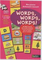 Words, words, words ! Anglais cycle 3 / mon premier dictionnaire interactif