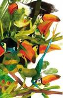 Notebook : Toucans