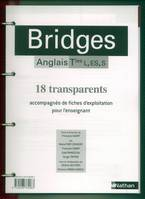 BRIDGES TERM. L, ES, S - TRANSPARENTS