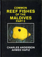 Common reef fishes of the Maldives - part 2
