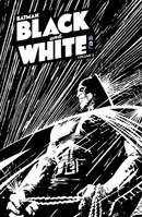 Batman: Black & White, Vol. 2