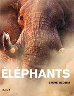 Eléphants, 117 photographies couleurs