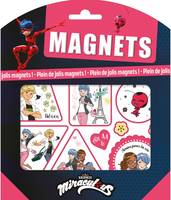 Miraculous-Pochette magnets