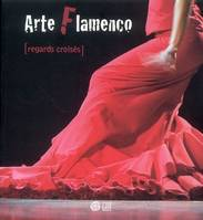 Arte flamenco / regards croisés, regards croisés
