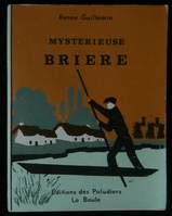 MYSTERIEUSE BRIERE.