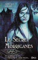 Le secret des Morriganes