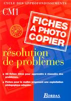 RESOLUTION PROBLEMES CM1 EURO 2001