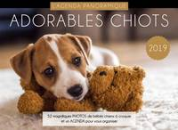 Agenda panoramique Adorables chiots 2019