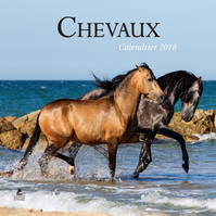Chevaux, calendrier 2018