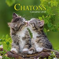 Chatons, calendrier 2018