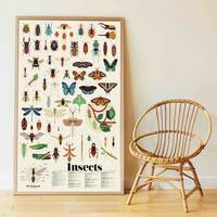dicovery stickers insectes