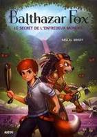 Balthazar Fox / Le secret de l'entredeux mondes