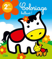 COLORIAGE BRILLANT PETIT PONEY