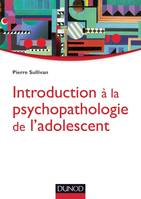 Introduction à la psychopathologie de l'adolescent, Approche psychanalytique