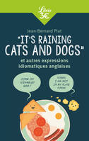 It's raining cats and dogs / et autres expressions idiomatiques anglaises