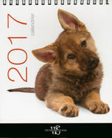 Chiens / calendrier de table 2017