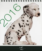 Calendrier de table / chiens 2016