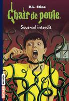 Chair de poule , Tome 17, Sous-sol interdit