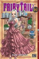 14, Fairy Tail
