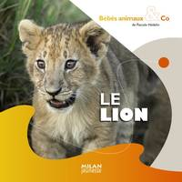 LE LION BEBES ANIMAUX & CO -