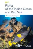 Fishes of the Indian Ocean and Red Sea
