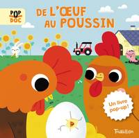 De l'oeuf au poussin - Pop up
