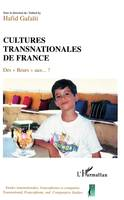 Cultures transnationales de France, Des Beurs aux...?