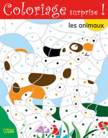 COLORIAGE SURPRISE LES ANIMAUX