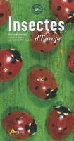 Insectes d'Europe
