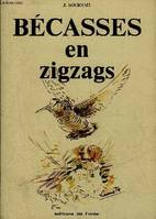 BECASSES EN ZIGZAGS.