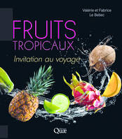Fruits tropicaux / invitation au voyage