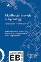 Multifractal analysis in hydrology, Application aux séries temporelles