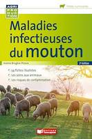 Maladies infectieuses du mouton - 2e édition