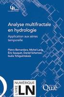 Analyse multifractale en hydrologie, Applications aux séries temporelles