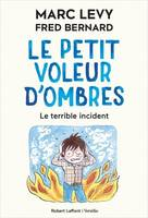 Le petit voleur d'ombres, 3, Le terrible incident