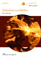 Turbulences au Sidobre