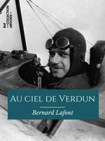 Au ciel de Verdun, Notes d'un aviateur