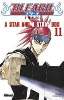 11, Bleach, A star and a stray dog