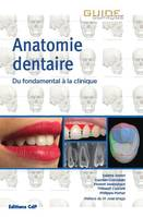 Anatomie dentaire, Du fondamental à la clinique