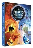 Les Pierres De Dragon Tome 1 - La Metamorphose