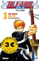 Bleach / The death and the strawberry