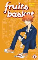 Fruits Basket Perfect T03